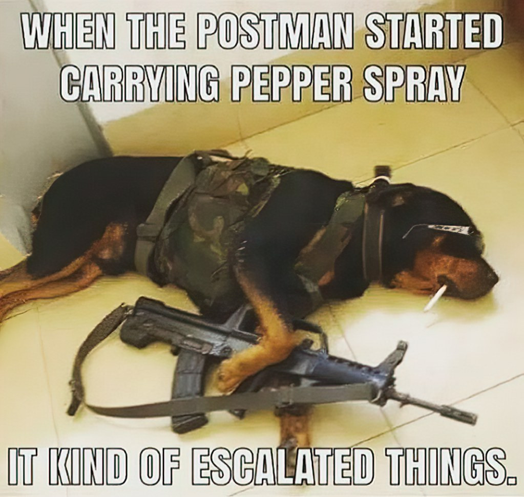 How About A Pet Picture Thread: Dogs, Cats, ...-postman.jpg