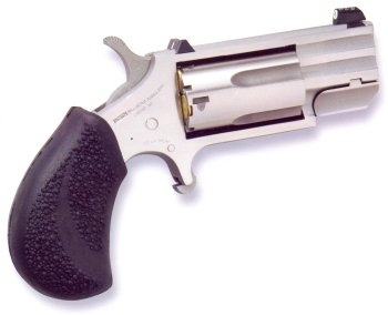 Bersa Thunder .380 ACP or NAA Black Widow .22 Magnum?-pug.jpg