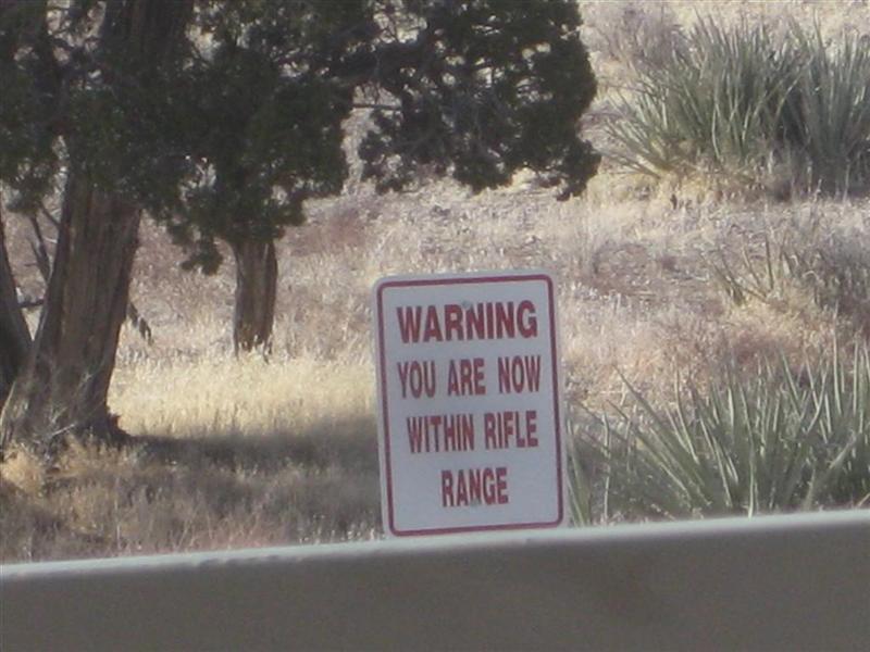 What To do - Strange Visitor at the Door-rifle-range.jpg