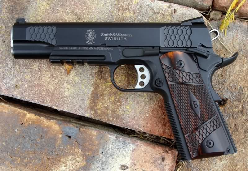 Thoughts on S&W E Series 1911 Pistol-rrjms3.jpg