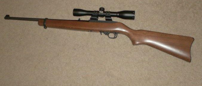 Rimfire Pics, Lets See the Plinkers!(Pic Heavy)-ruger1022.jpg