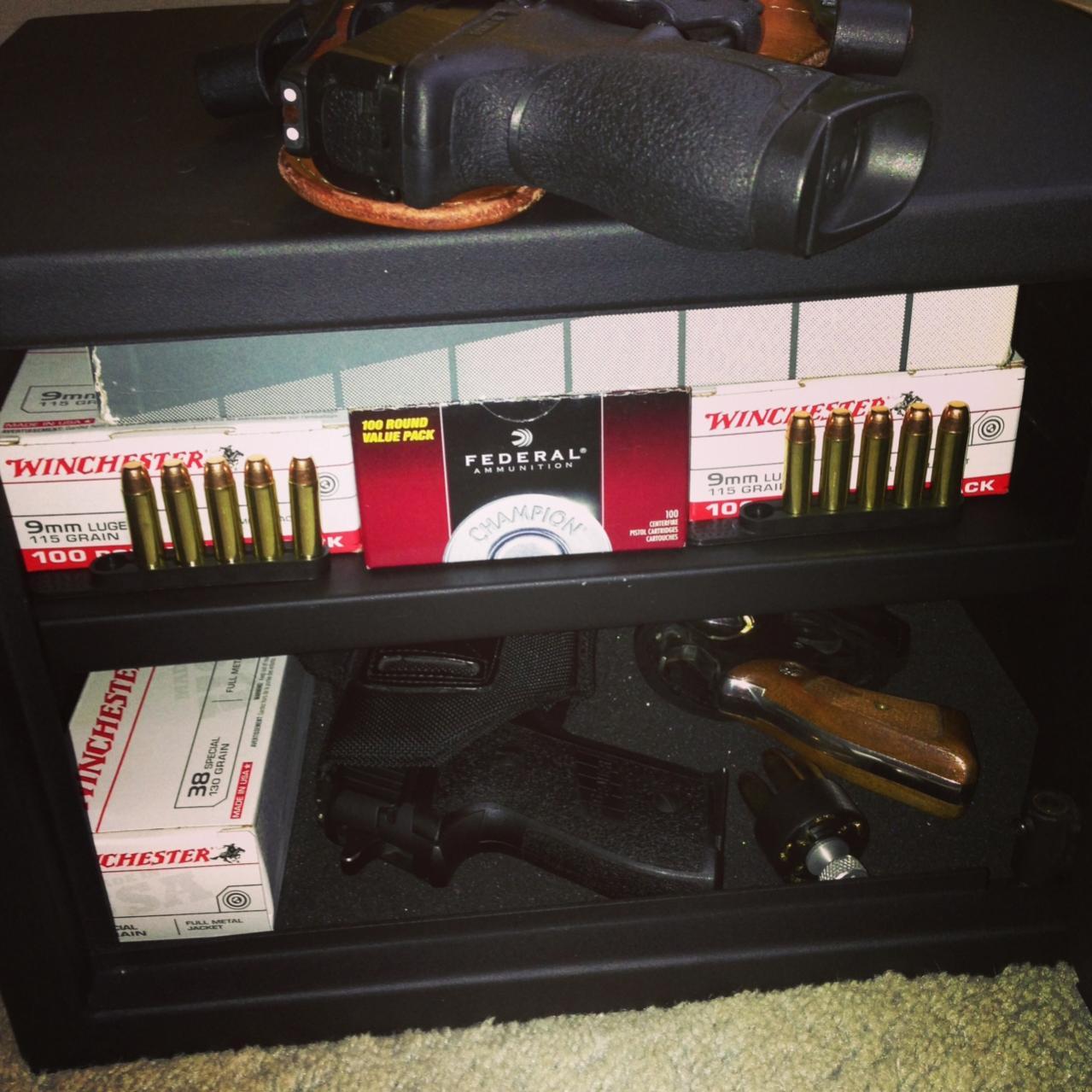 MY carry pistols!-safe1.jpg