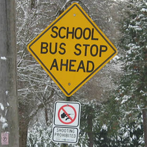 Pro-Gun, Pro-Defense Saying and Pictures-schoolbus.jpg