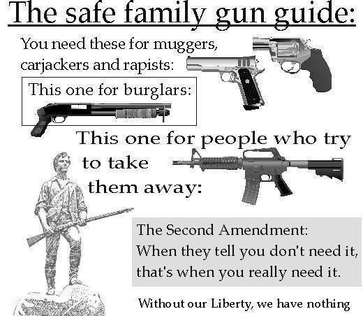 Show us your favorite Anti-Anti gun slogans!-secondamendment.jpg