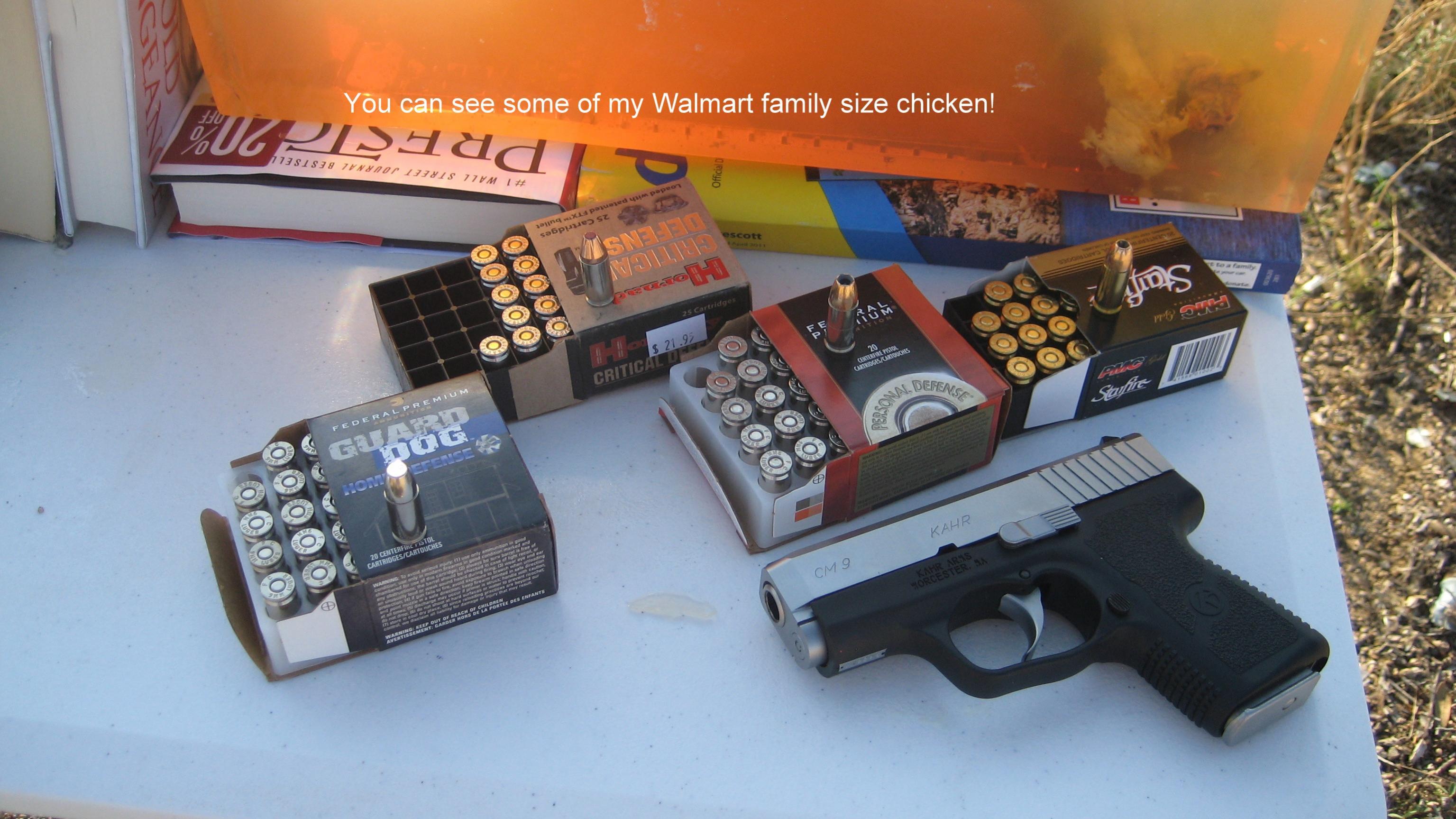Testing the new GUARD DOG SD ammo!-setup.jpg