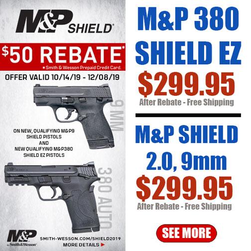 Swinging deal on M&P Shield-shield.jpg