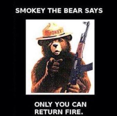 Smokey the Bear-smokey.jpg