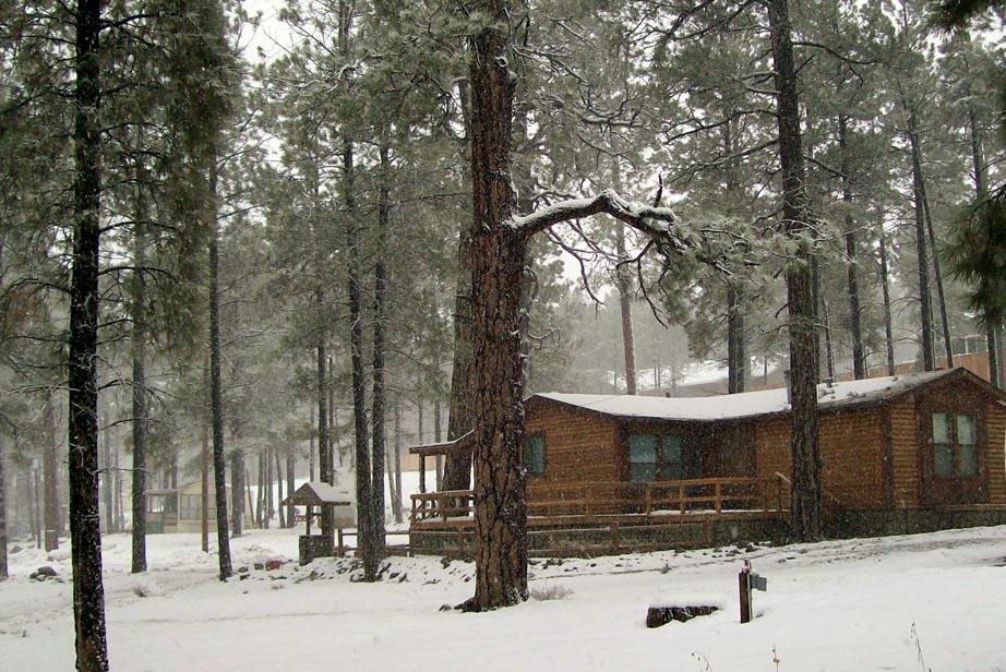 It's snowing again!!-snow.jpg