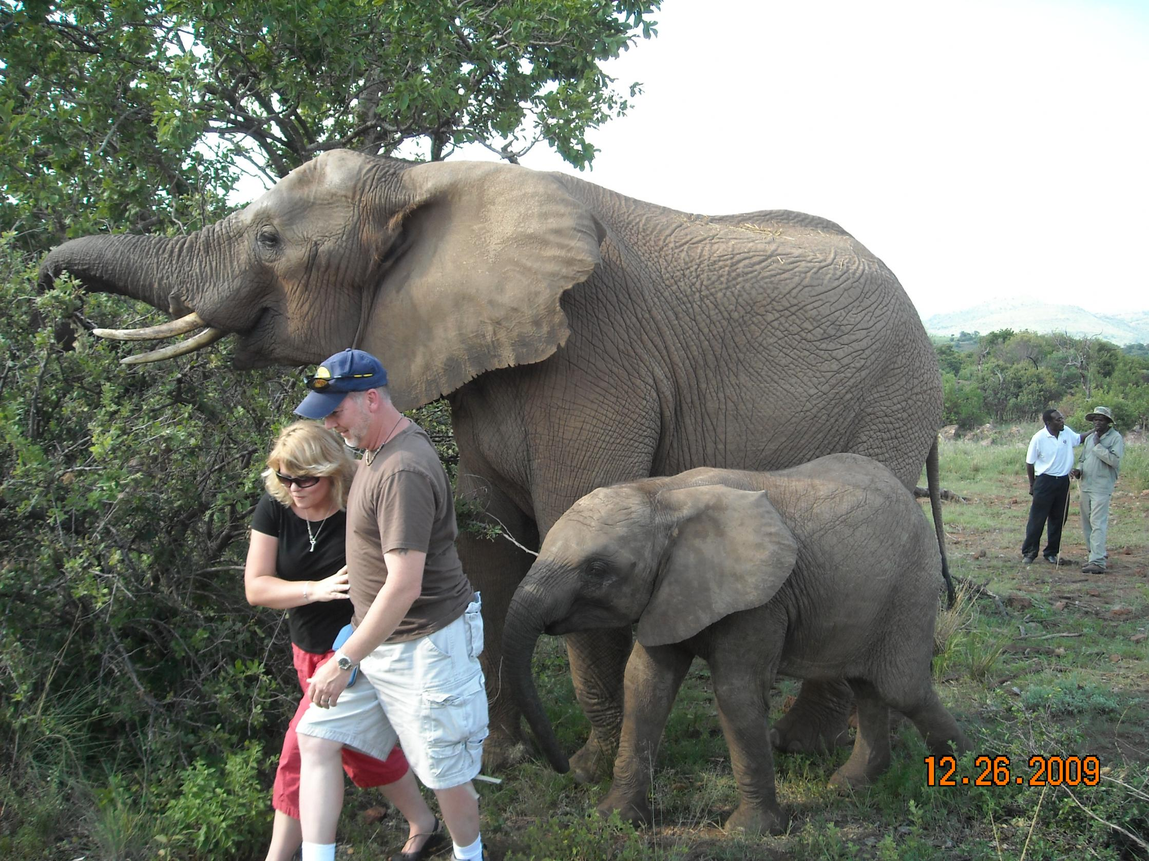 Animal threats-south-africa-2009-707.jpg