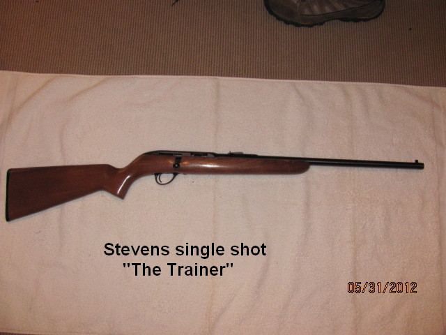 Rimfire Pics, Lets See the Plinkers!(Pic Heavy)-stevens.jpg