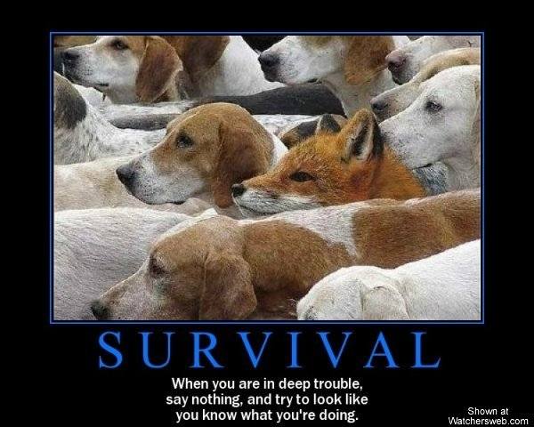 More Inspirational Posters-survival-motivational-poster-fox-hounds-when-1.jpg