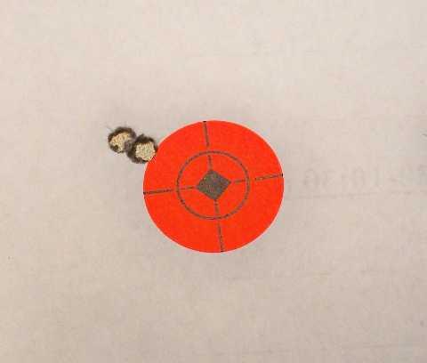 Range Report:  Bravo Company DM rifle.-target1.jpg