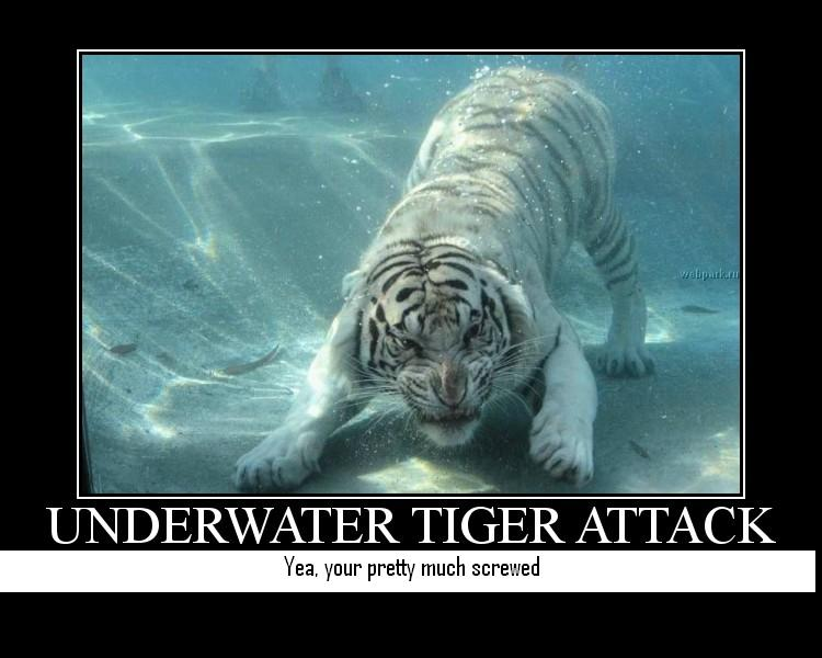 More Inspirational Posters-tiger.jpg