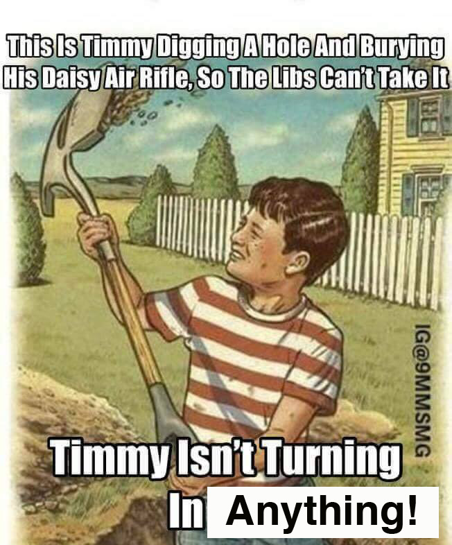 Not even an air rifle is safe from the liberals...-timmy.jpg