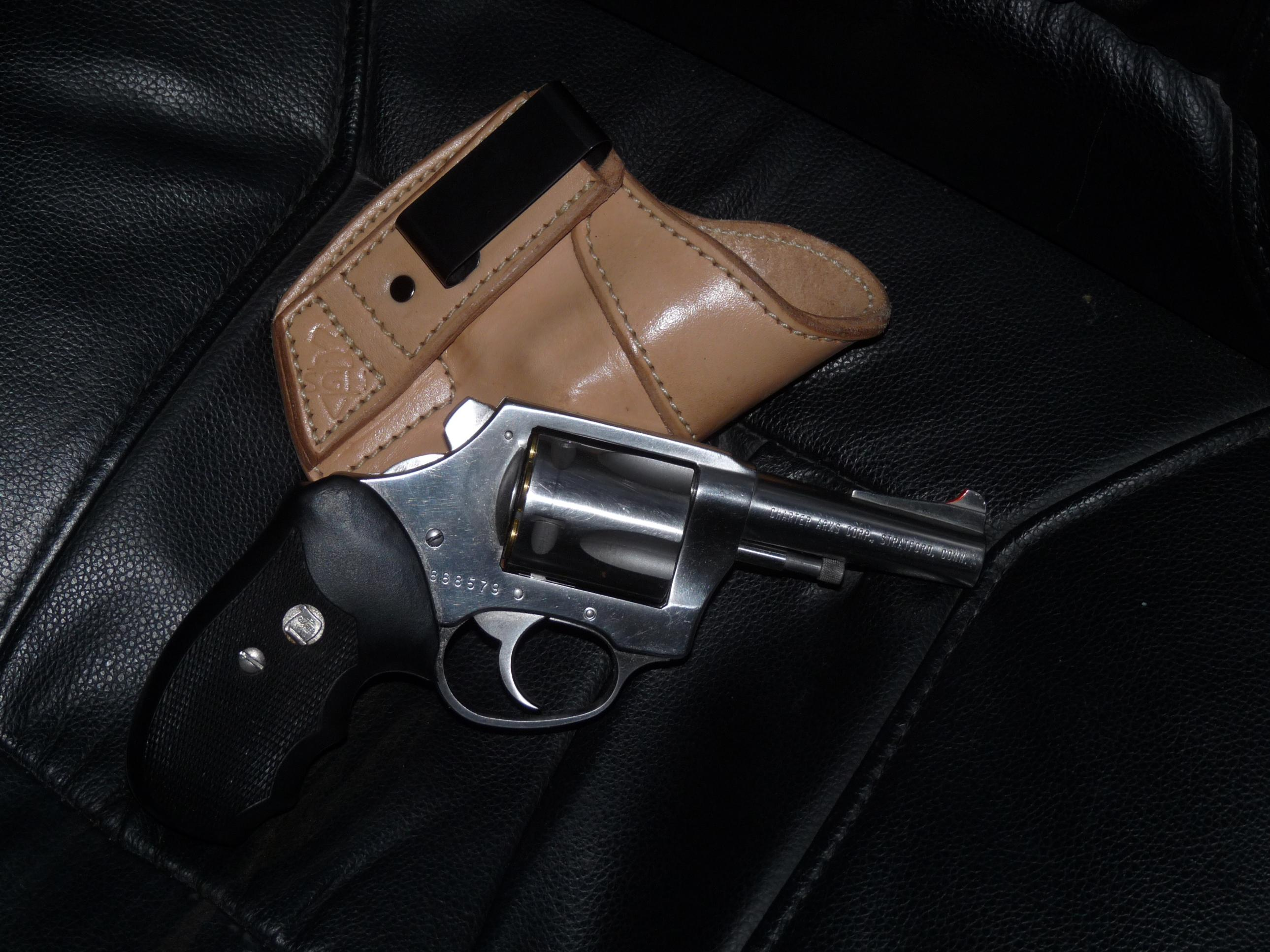 Opinions on Charter Arms Bulldog-walkabout-002.jpg