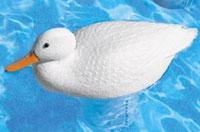 Swimming-white_chloriduck_chlorinator.jpg