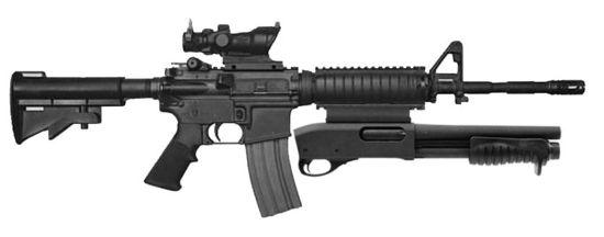 Better defensive ammo: .223 JHP or 5.56 NATO green tip?-woah2kg.jpg