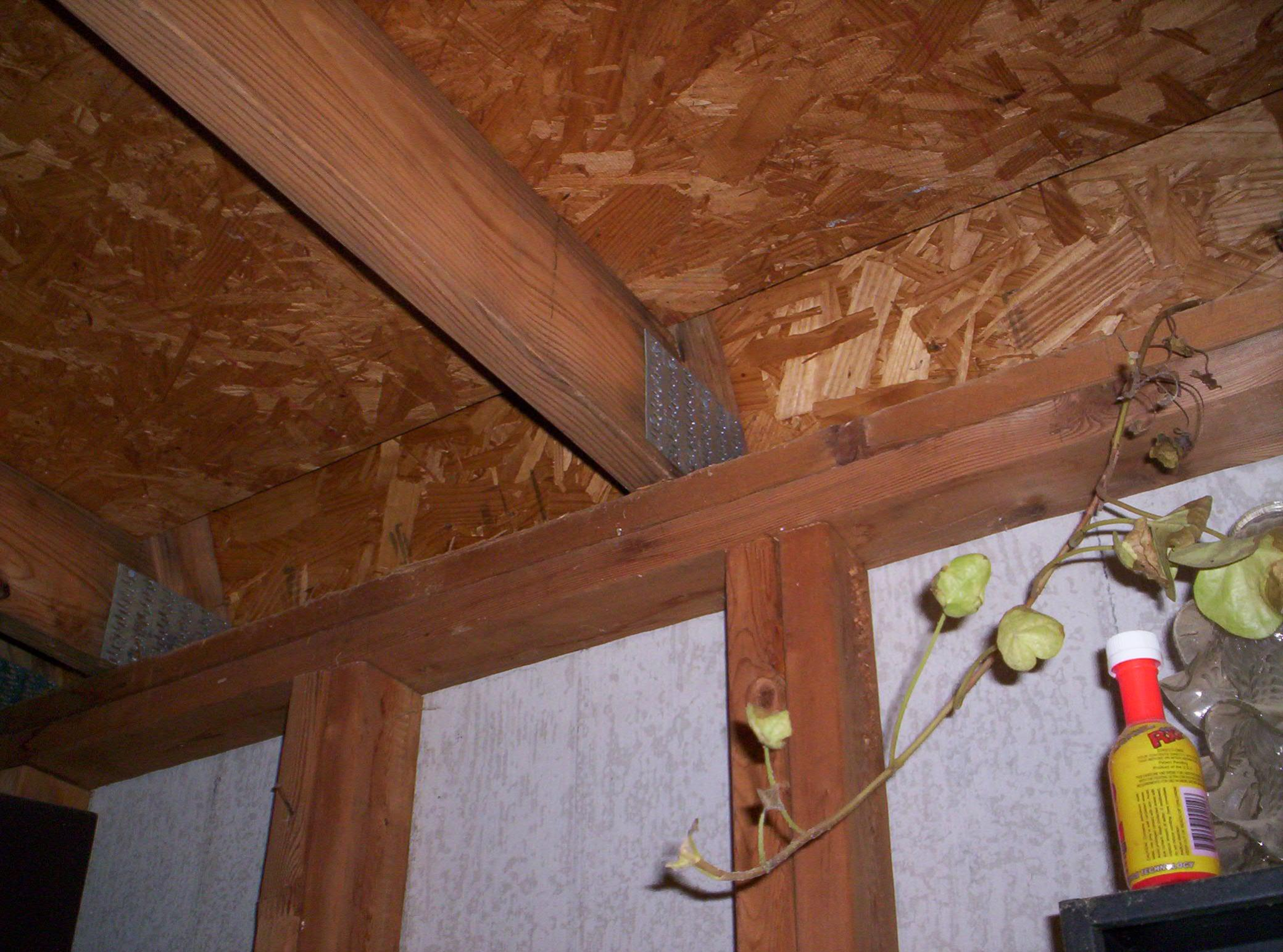 What Should I Know About Sheds?-workshop-pics-005.jpg