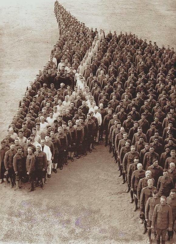 WWI horse tribute-wwi-horse-tribute.jpg