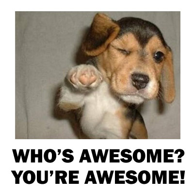 Name:  you're awesome.jpg Views: 26 Size:  31.7 KB